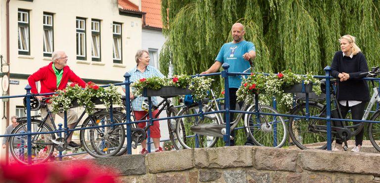 Stern-Tour um Friedrichstadt